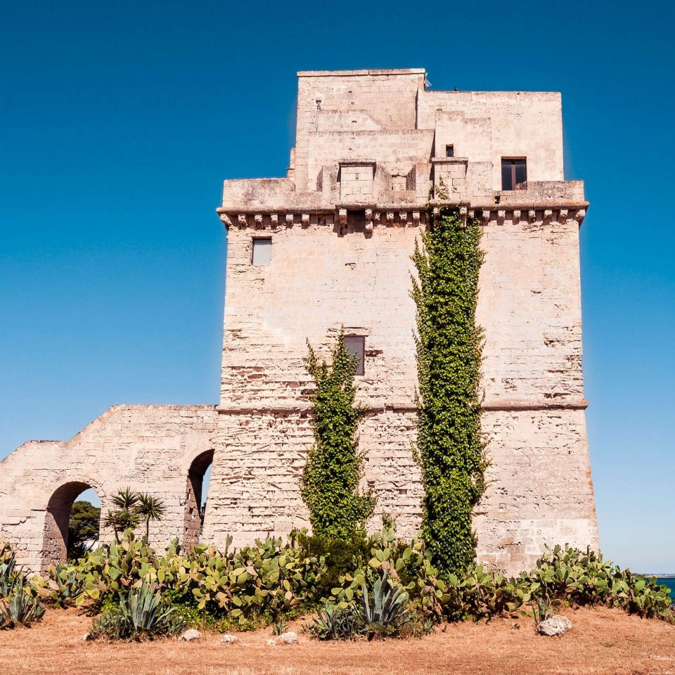 Prickly pears surround the coastal tower Torre Colimena