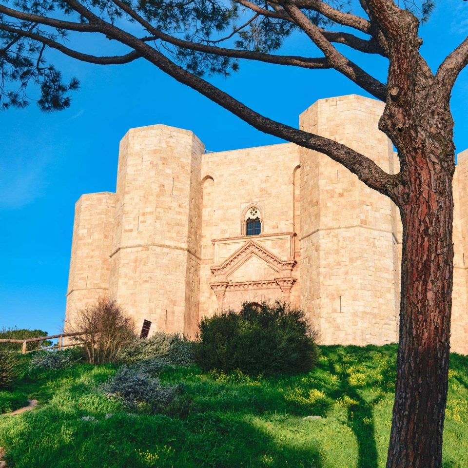Detail of Castel del Monte with blue sky | National Park of Alta Murgia