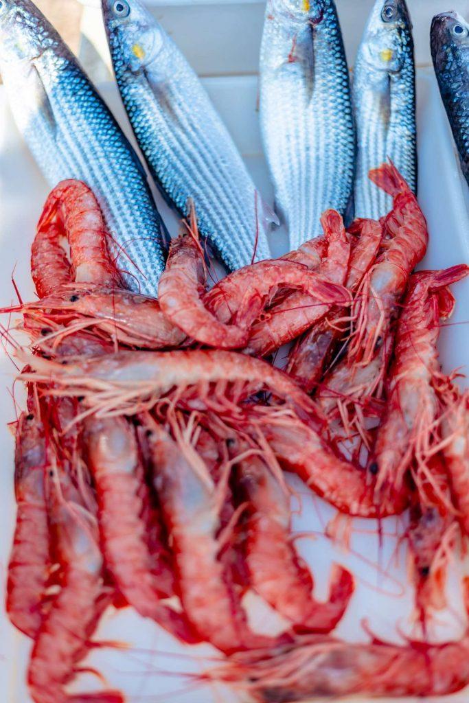 Raw fish at the fish market at the jetty Saint Nicholas in Bari