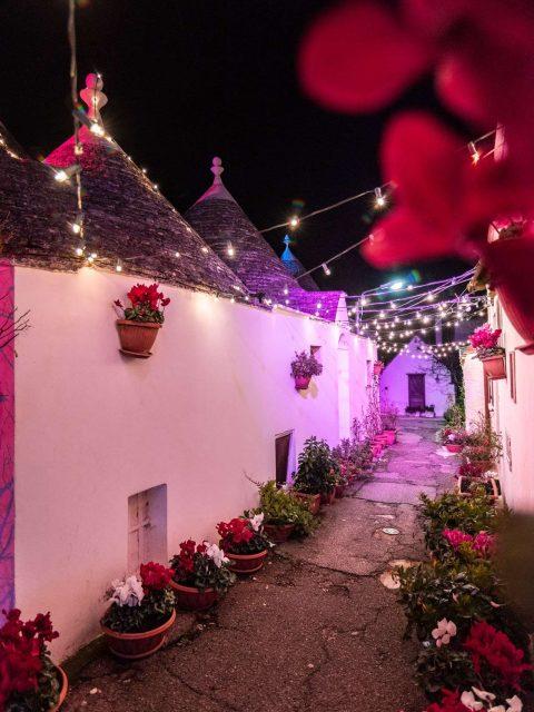 Christmas lights in Puglia, a narrow street of Alberobello