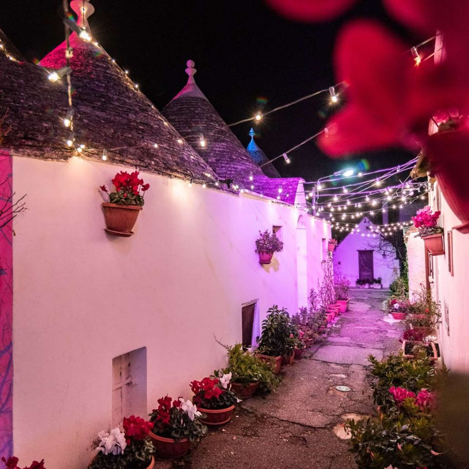 Christmas lights in Puglia, a narrow street of Alberobello